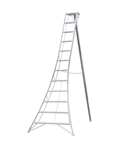 Hasegawa Tripod Ladders